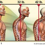 three human body demonstrating different posture positions