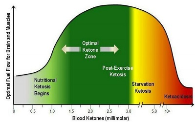 Chart describing ketosis and how to have a healthy lifestyle