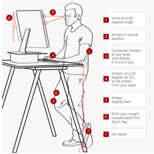 Diagram of the ideal workstation